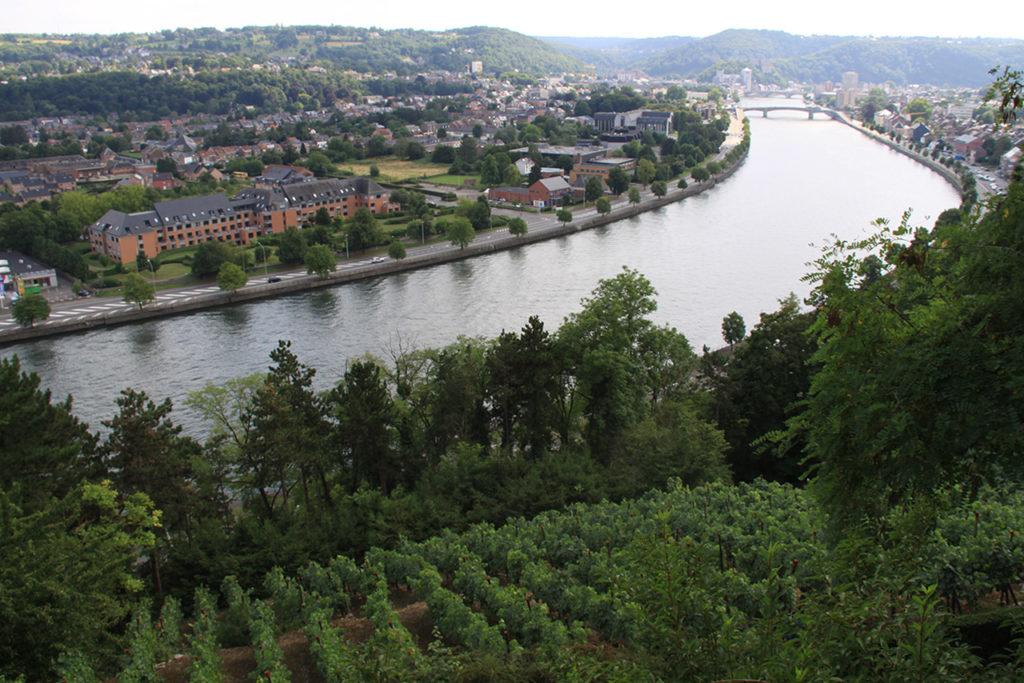 Vue vers Huy et sur la Meuse depuis le vignoble de Jacques Mouton