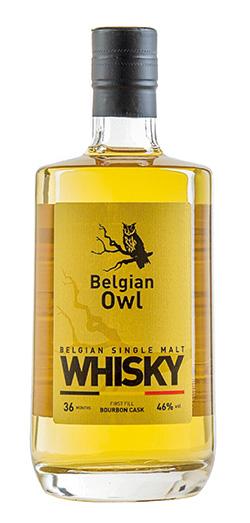belgian-owl-petit