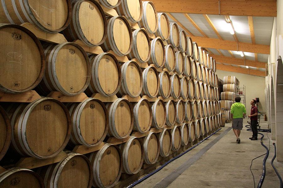 Le chai de vieillissement du cognac à la coopérative